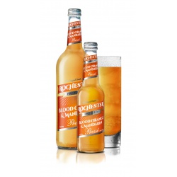 Premium Orange Mandarin 275 ml